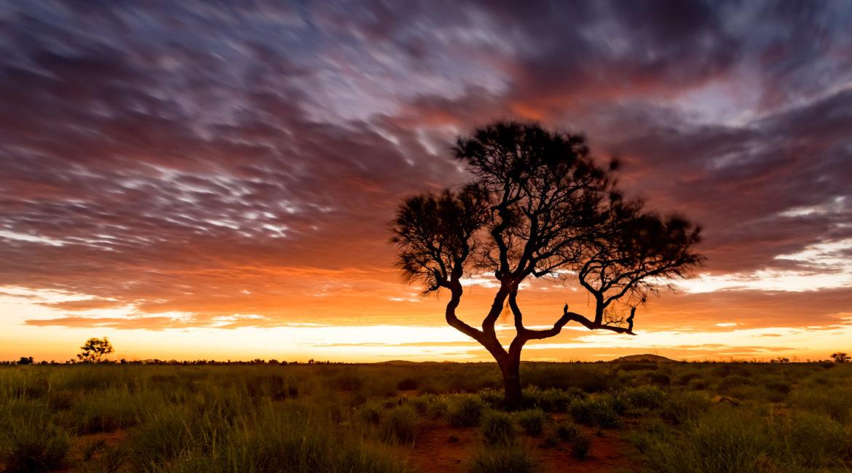 australian-outback-1